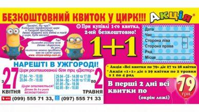 квито1+1